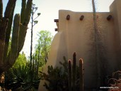 Smooth stucco walls are in sharp contrast to the spiny cacti at the Phoenix Botanical Gardens.