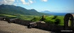 St Kitts 124